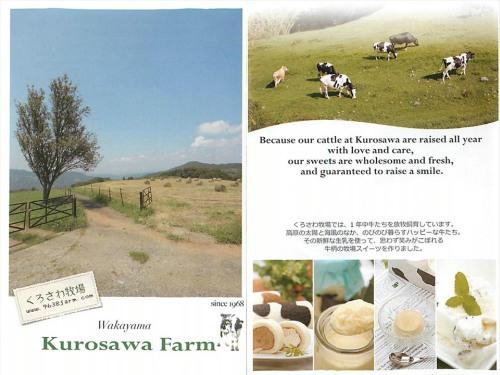 kurosawa4